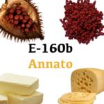 E 160b- Annato