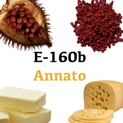 E 160b Annato