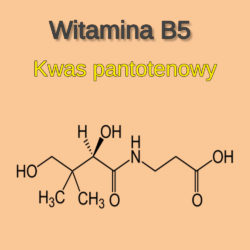 kwas pantotenowy