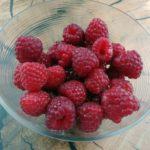 Malina właściwa (łac. Rubus ideaus)